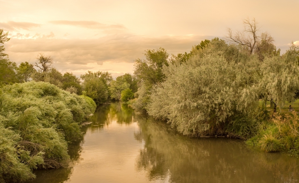Jordan River is getting new trees and master plan